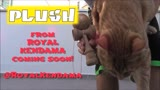 Proto Plush Play - Royal Kendama