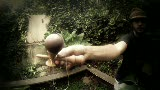 PAW 3 SPike Kendama from thekengarden.com