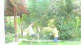 Ori & Avner 1st video