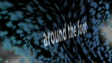 Foot Orbit (Around the Foot)