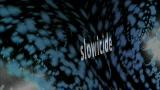 Slowicide
