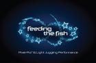 FeedingtheFish avatar