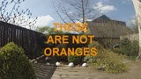 These are not oranges