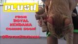 Proto Plush Play - Royal Kendama