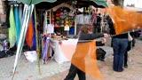 jonglerie aux bolas foulards  fête des sorcières de St Chaptes